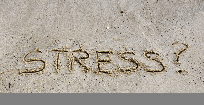 verminder stress